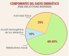 Grafica Metabolismo reposo